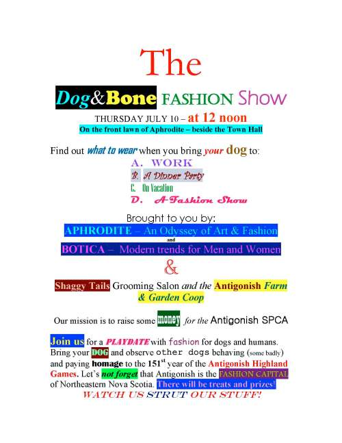 The Dog and Bone Fashion Show - colour